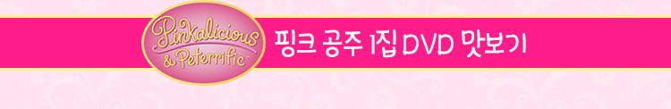 핑크 공주 1집 DVD 맛보기